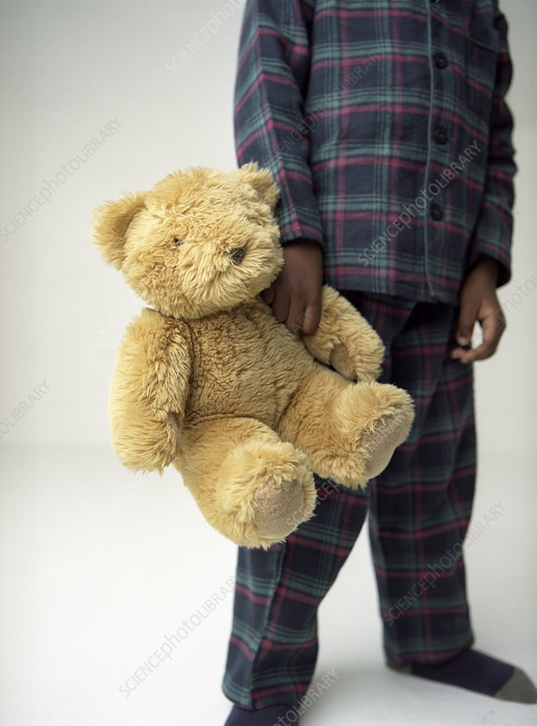 Boy's teddy bear