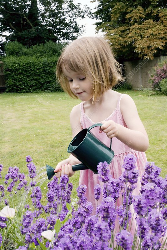 Young girl watering flowers