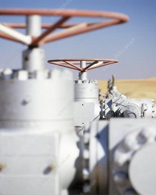 Gas well valves