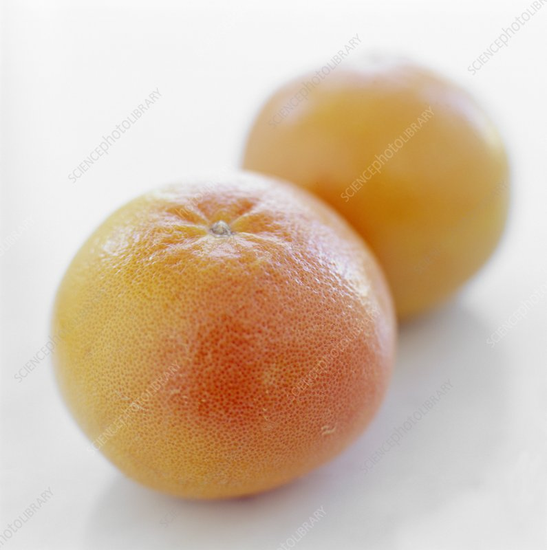 Pink grapefruits