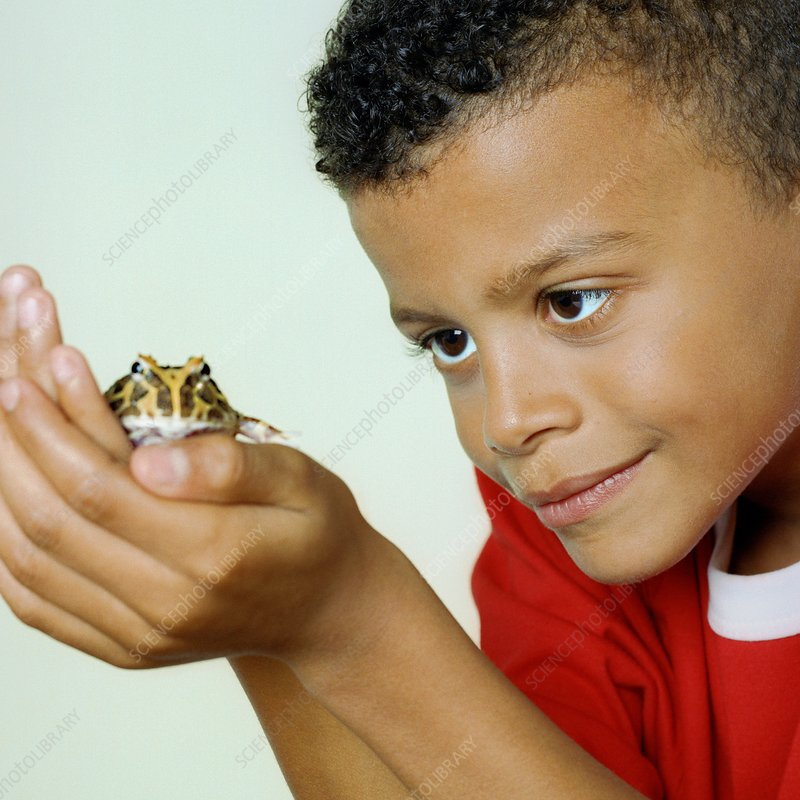 Boy with his pet toad