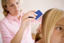 Head lice treatment