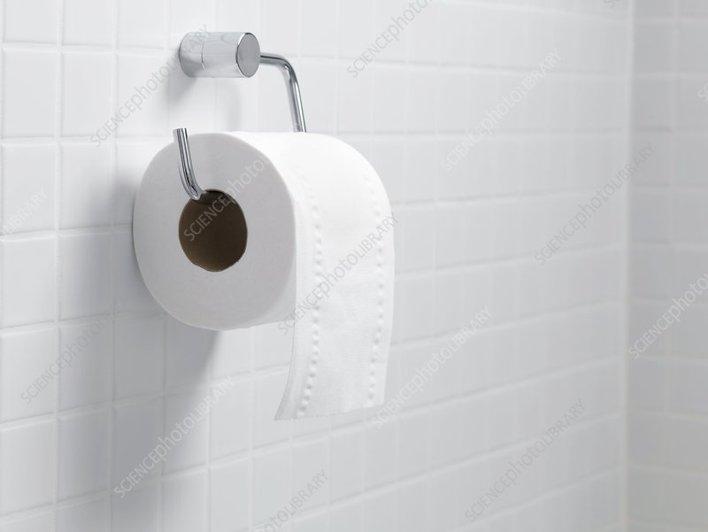 Toilet paper holder and roll
