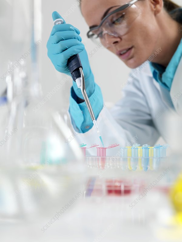 Researcher pipetting liquid