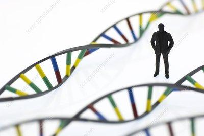 Human genome, conceptual image