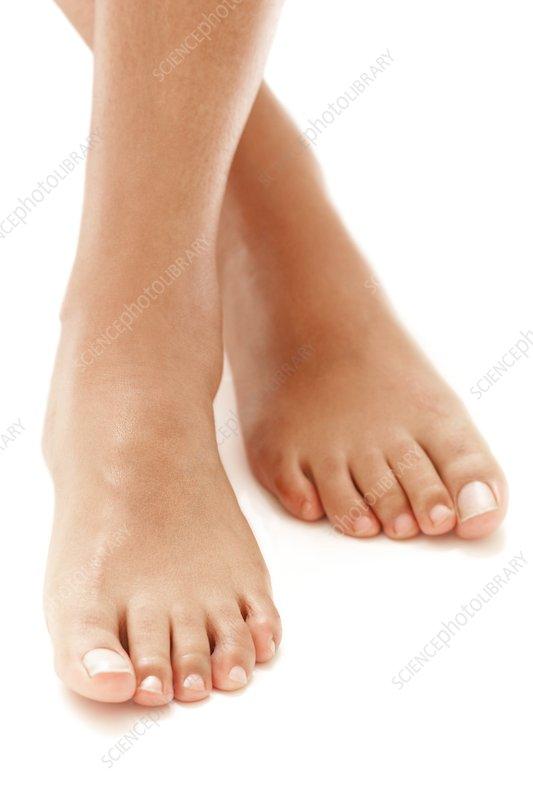 F0029841-Healthy_feet-SPL.jpg