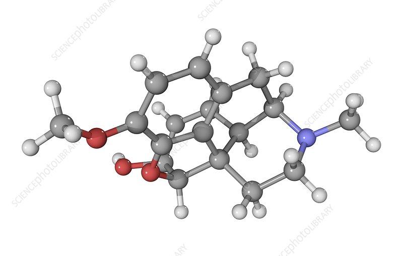 Codeine drug molecule