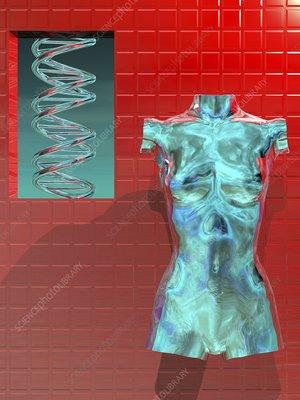 Human genome, conceptual artwork
