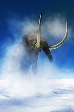 Woolly mammoth, artwork