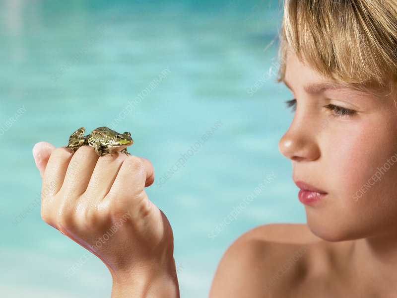 Boy holding a frog in his hand