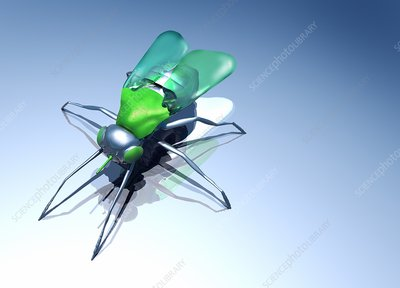 Robotic fly, artwork