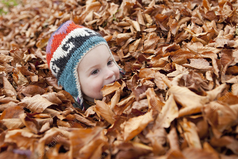 Girl buried in autumn leaves