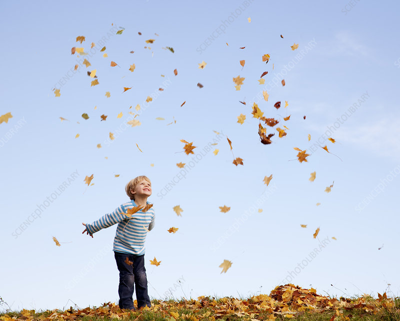 boy throwing autumn leaves into the air