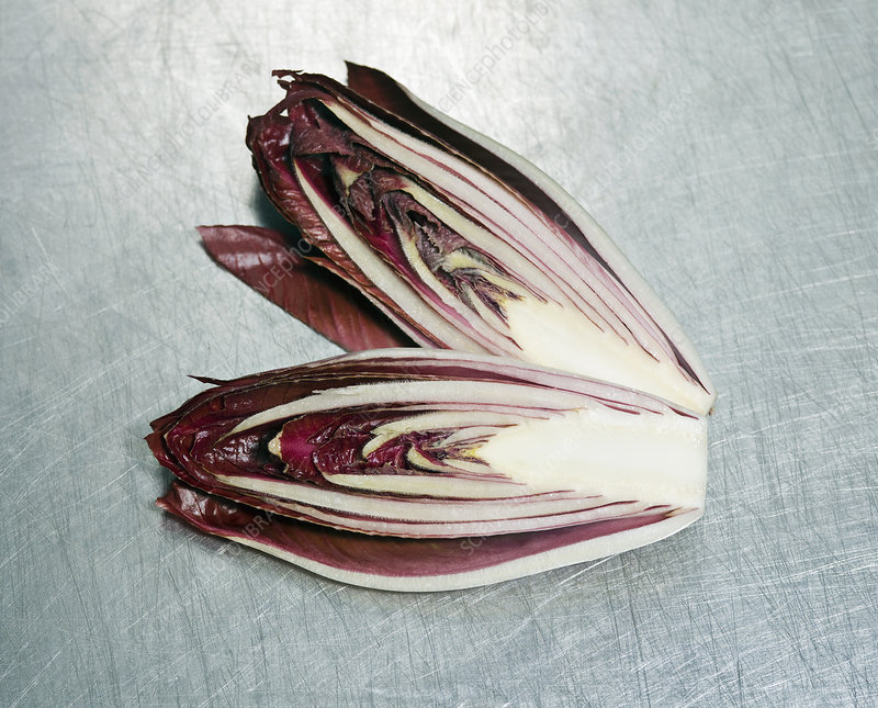 A small red cabbage cut in two pieces