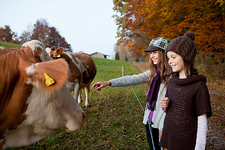 Two girls at a pasture with cows