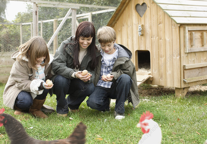 Mother and children feeding chickens