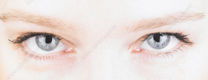 Close up of a woman\'s eyes