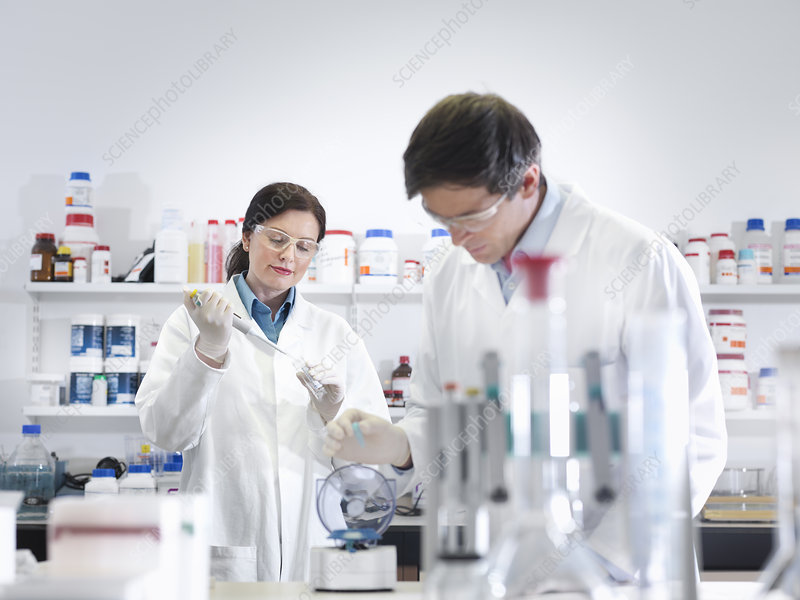 Scientists performing test in lab