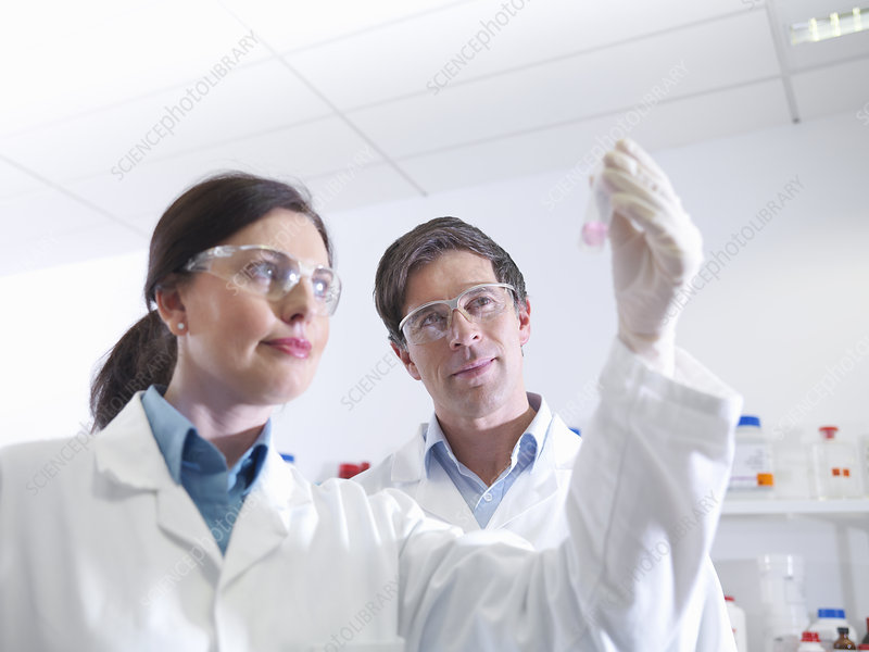 Scientists with sample in laboratory