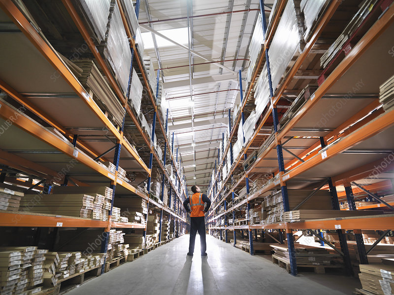 Worker Inspecting Goods In Warehouse