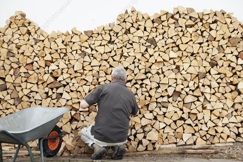Older man piling wood into wheelbarrow