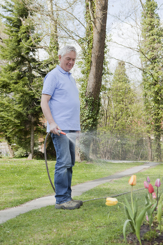 Older man watering flowers in backyard