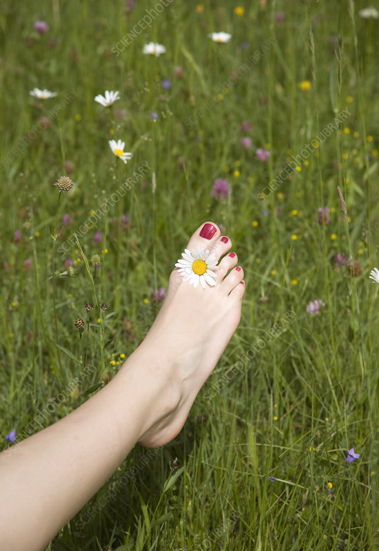 woman's foot in grass with flower
