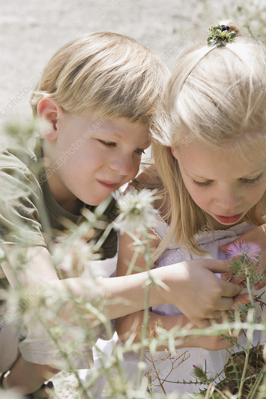 A brother and sister looking at a flower