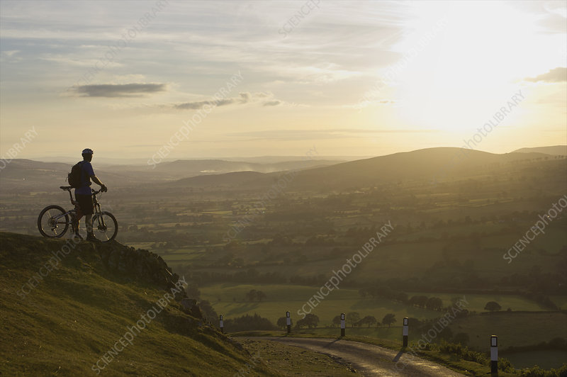 Mountain biker looking at the sunset