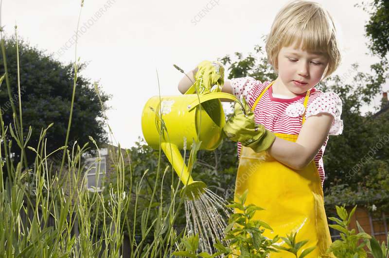 young girl watering garden