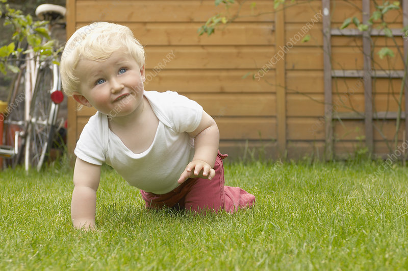 young boy crawling in garden