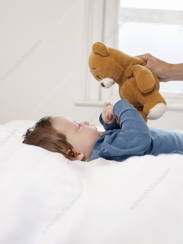 Baby looking at teddy bear