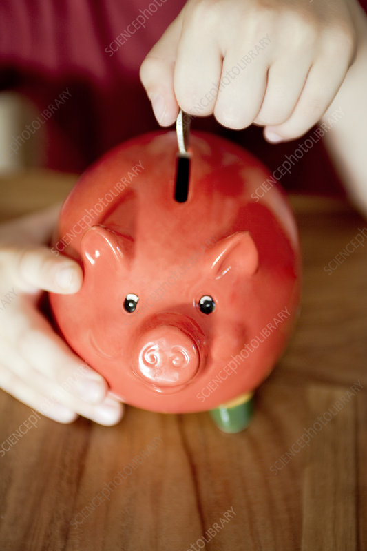Money being put in a piggy bank