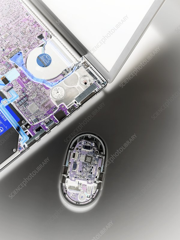 Laptop and mouse interior