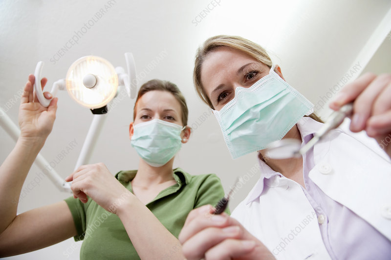Dentist and dental technician in surgery