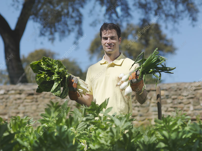 Man showing freshly picked vegetables