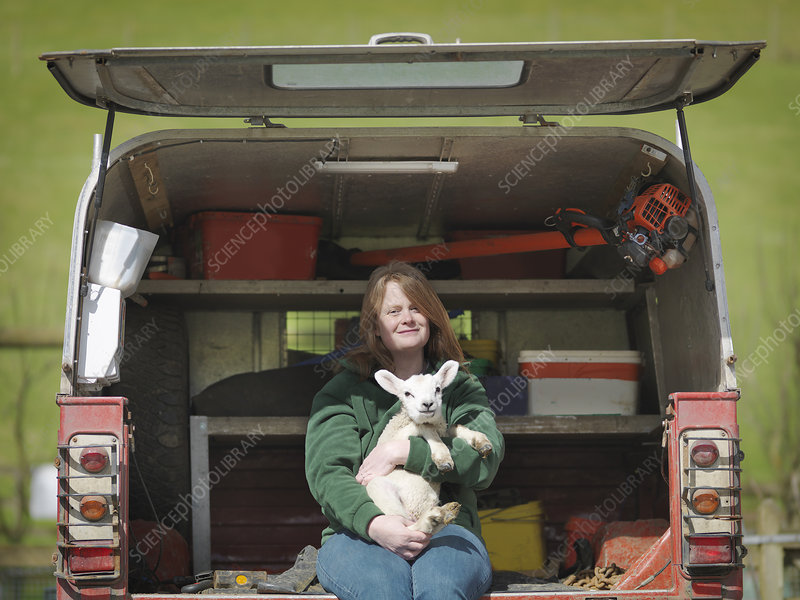 Woman sitting in van boot holding lamb