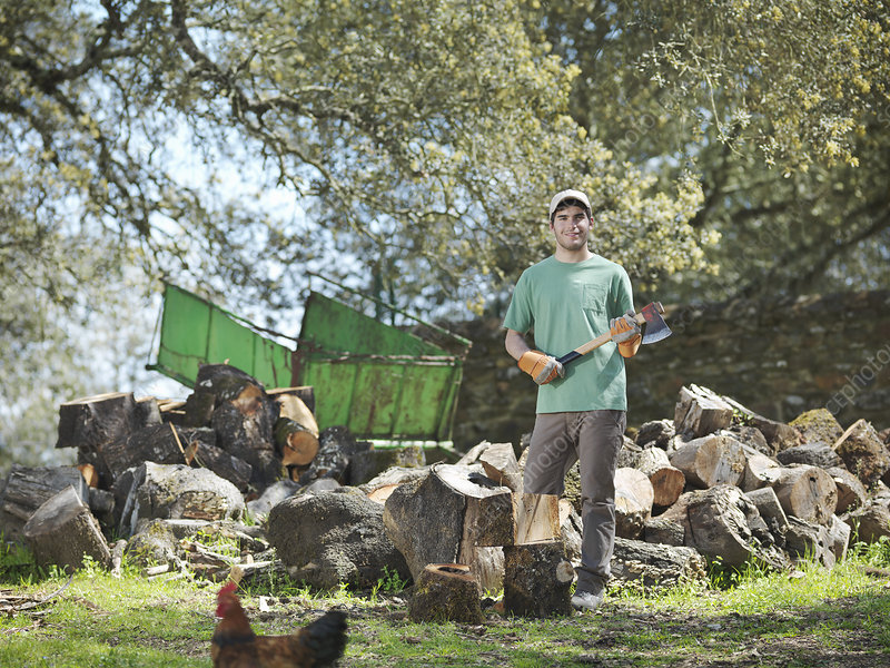 Man chopping wood on farm