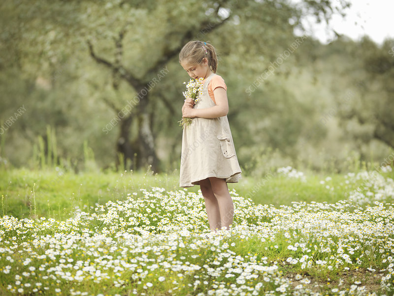 Child smelling bunch of daisies
