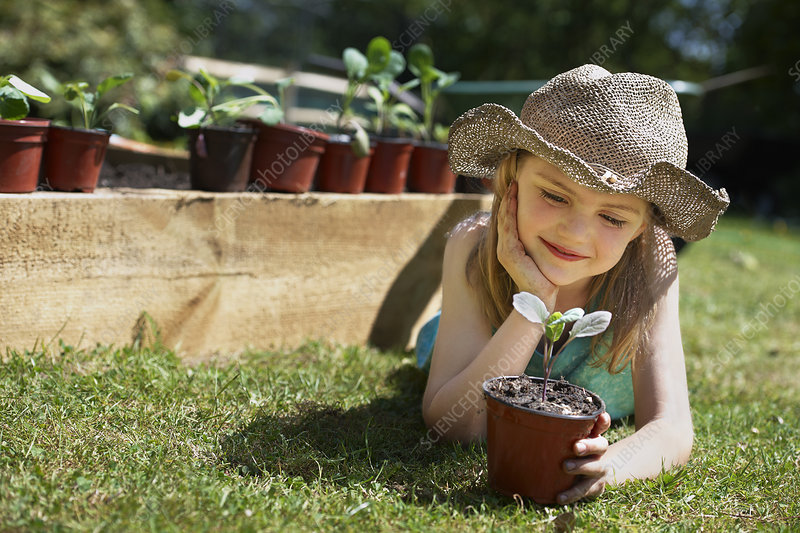 Young girl looking at vegetable plant