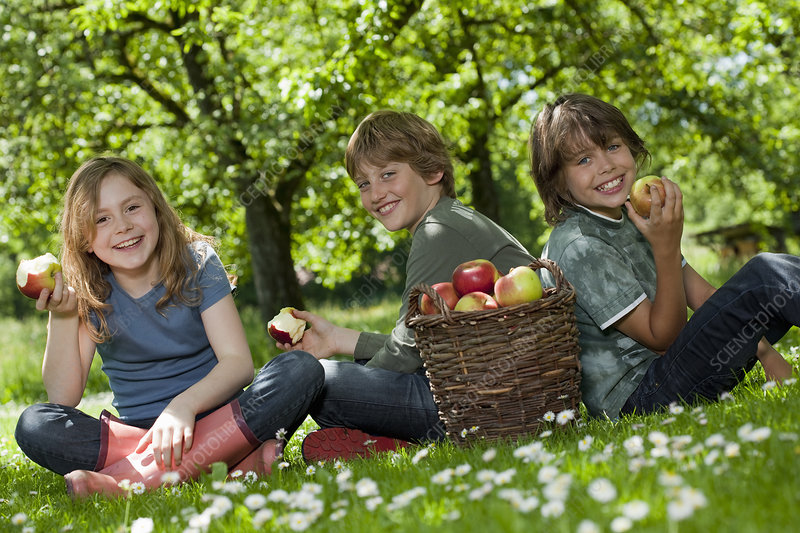 Kids in meadow, eating apples