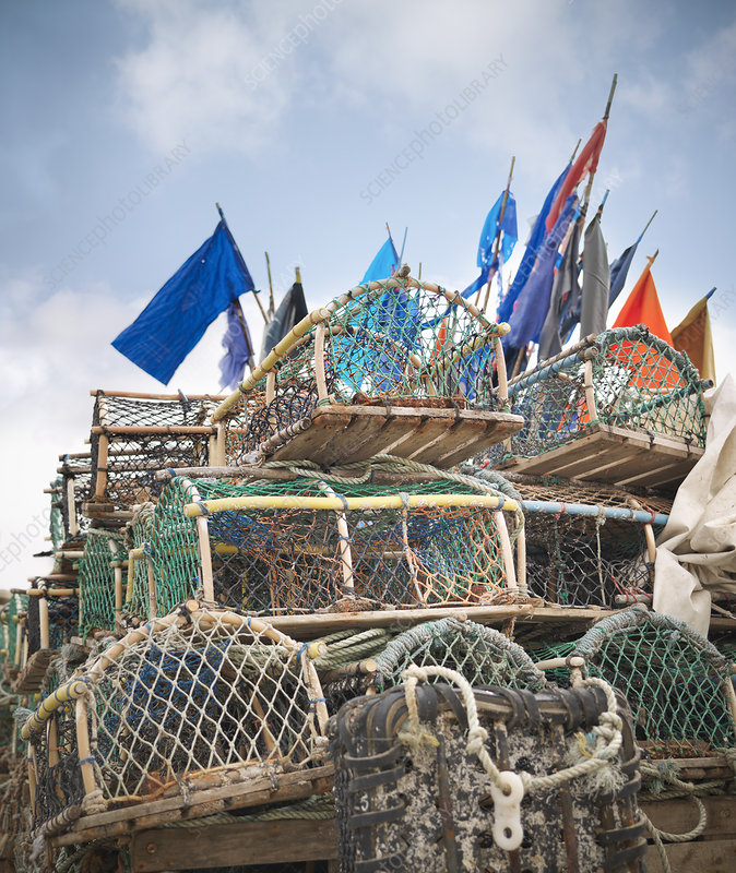 Lobster pots with flags on deck