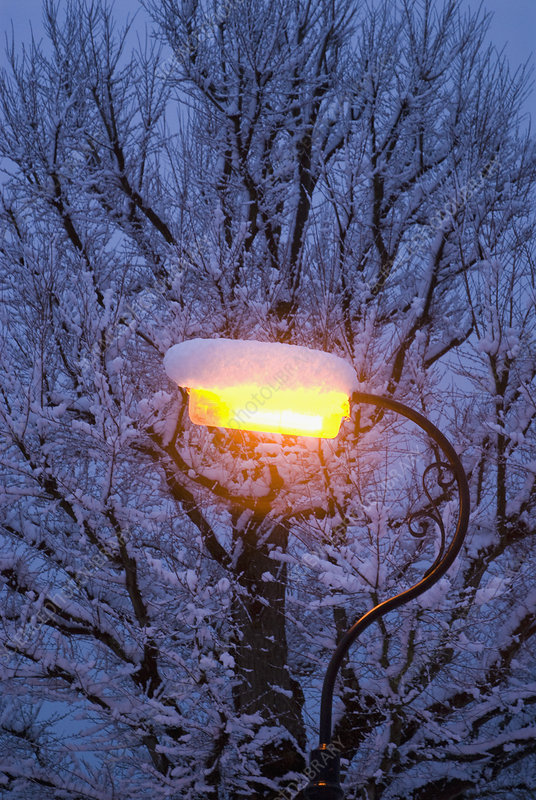 Snow on streetlight at night