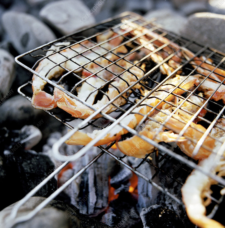 Close up of prawns grilling over fire