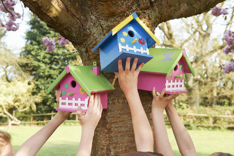 Children hanging birdhouses in tree