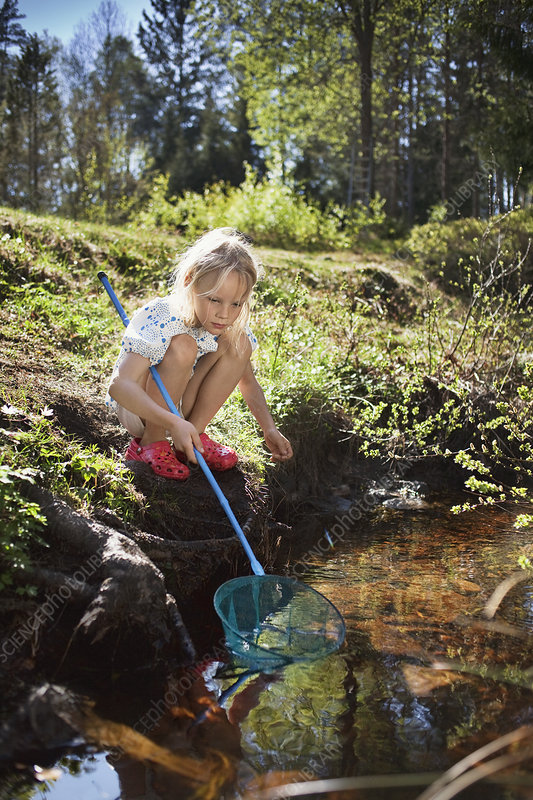 Girl fishing with net in creek