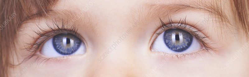 Close up of baby girl's blue eyes
