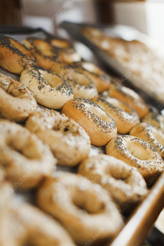 Close up of bagels in bakery