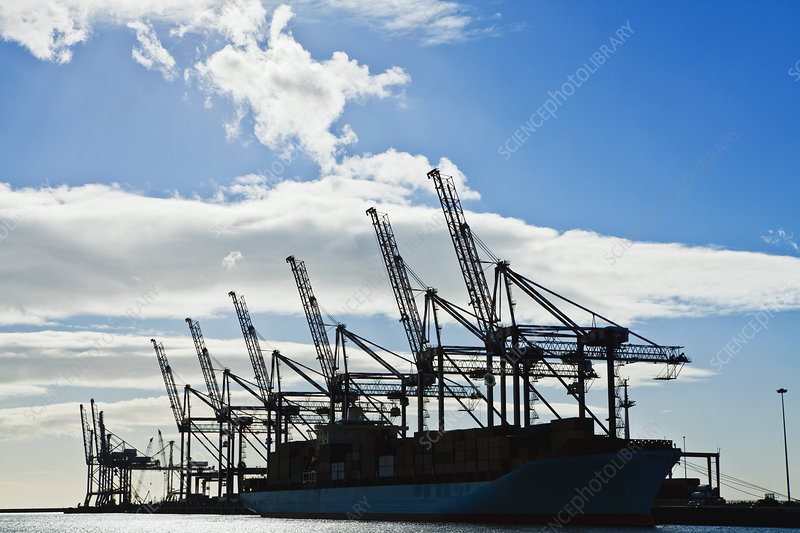 Silhouette of cranes against blue sky