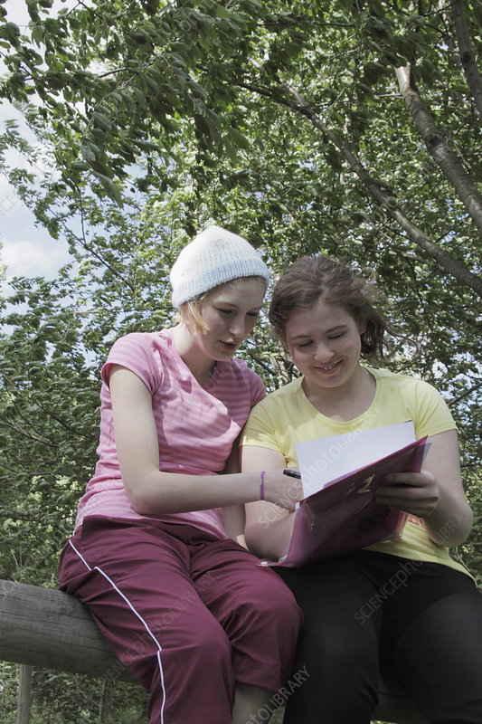 Girls doing homework together in park